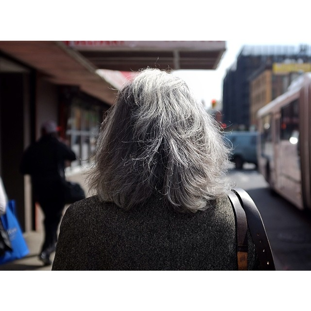 Yes, the back of your head. No, I'm not following you.#backofyourhead #nyc #les #greyhair #grey #gray #saltnpepper #joefornabaio