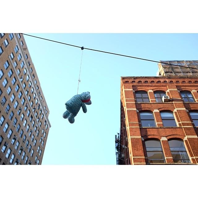 Teddy?!?!?!#teddy #teddybear #hangingaround #nyc #soho #joefornabaio