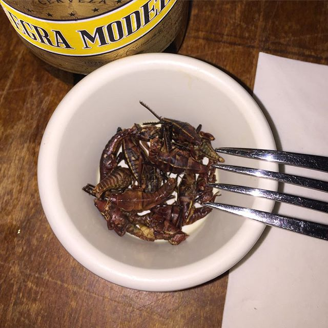 Grasshoppers. Yeah, it's happening.#grasshoppers #chapulines #joefornabaio #nyc #les #lowereastside #mexican #casamezcal